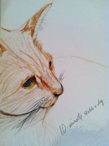 "Our cat, ""Chollah"" (Choy-yah); colored pencil."