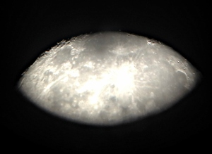 Moon Jan. 31, 2015. Taken with my iPhone looking through high powered telescope. (Click to enlarge)