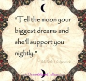 tell the Moon your dreams meme